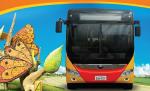 Casas transporte guayaquil villaclub 2