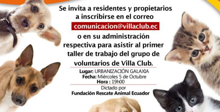 Convocatoria para voluntarios de Bienestar Animal en Villa Club